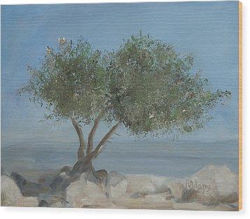 Carob Tree On Mt. Arbel  Wood Print by Rita Adams