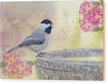 Carolina Chickadee In Camellia Garden Wood Print by Bonnie Barry