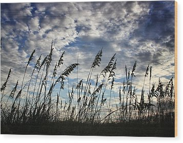 Carolina Sea Oats Wood Print