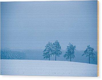 Carolina Snow Wood Print
