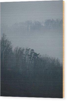 Carolina Winter #1 Wood Print by Jp Grace