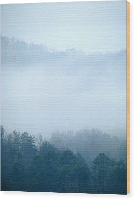 Carolina Winter Number Two Wood Print by Jp Grace
