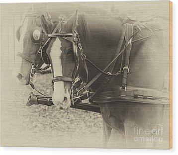 Carriage Horses II Wood Print