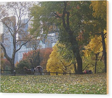 Wood Print featuring the photograph Carriage Ride Central Park In Autumn by Barbara McDevitt