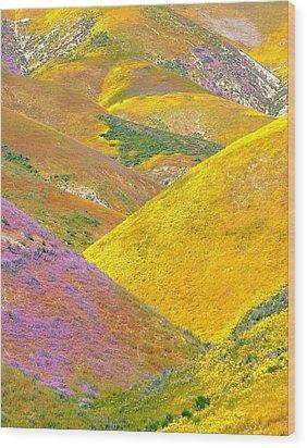 Carrizo Wildflowers Vertical Wood Print by Marc Crumpler