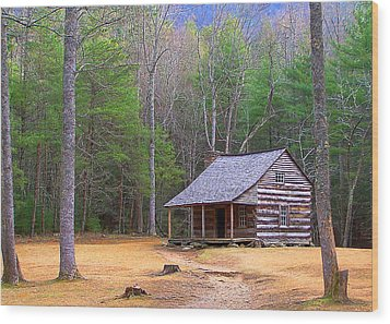 Carter Shield's Cabin II Wood Print by Jim Finch
