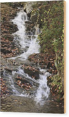 Cascade At High Falls Creek Near Mount Cheaha Alabama Wood Print by Mountains to the Sea Photo