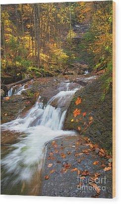 Cascade In The Glen Wood Print
