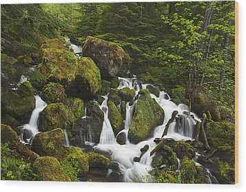 Cascades In The Woods Wood Print by Andrew Soundarajan