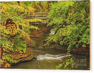 Cascadilla Gorge Cornell University Wood Print