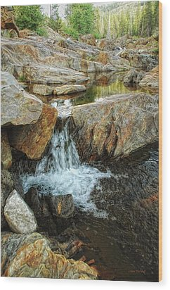 Cascading Downward Wood Print by Donna Blackhall