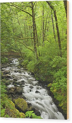 Cascading Stream In The Woods Wood Print by Andrew Soundarajan