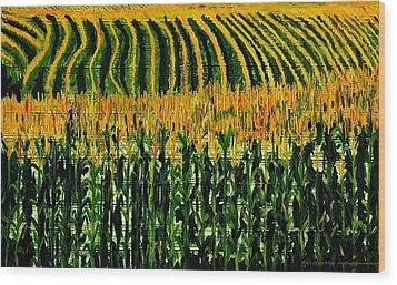 Cash Crop Corn Wood Print by Gregory Allen Page