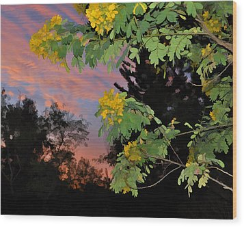 Casia Sunrise Wood Print