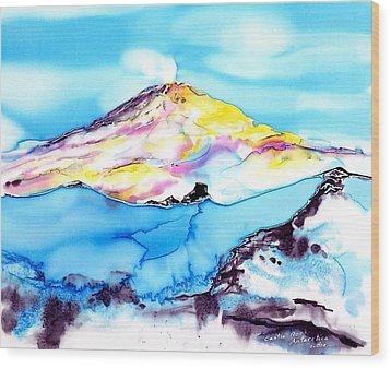 Caste Rock Antarctica Wood Print by Carolyn Doe
