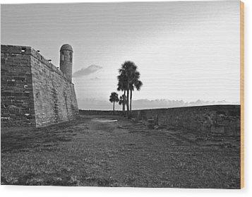 Castillo De San Marcos View 2 Wood Print