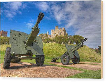 Castle Cannons Wood Print by Tim Stanley