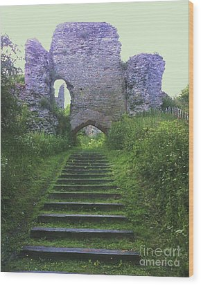 Wood Print featuring the photograph Castle Gate by John Williams
