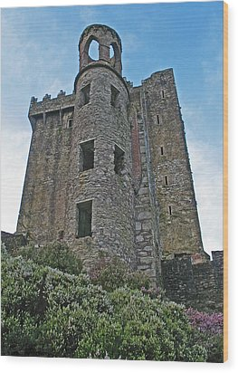 Wood Print featuring the photograph Castle In The Sky by Kathleen Scanlan