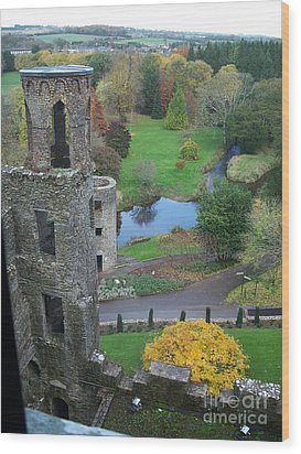 Castle Keep Wood Print by Marilyn Zalatan
