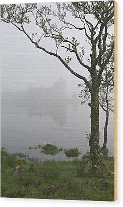 Castle Kilchurn Tree Wood Print by Gary Eason