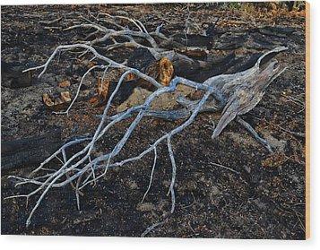 Casualties Wood Print