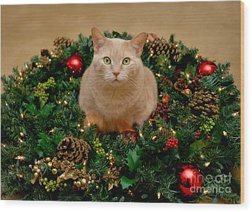 Cat And Christmas Wreath Wood Print by Amy Cicconi