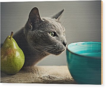 Cat And Pears Wood Print by Nailia Schwarz