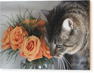 Cat And Roses Wood Print by Yumi Johnson