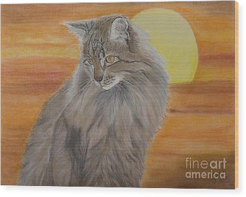 Cat And Sunset  Wood Print by Cybele Chaves