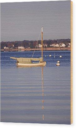 Cat Boat Wood Print
