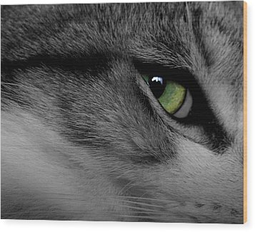 Cat Eye Wood Print by AR Annahita