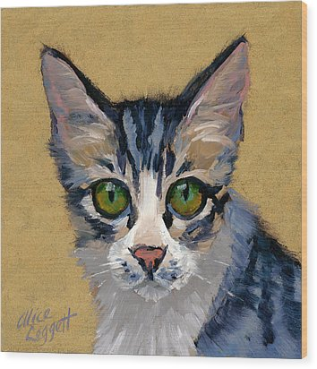 Cat Eyes Wood Print by Alice Leggett