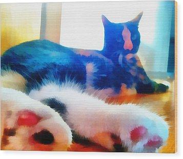 Cat Feet Wood Print