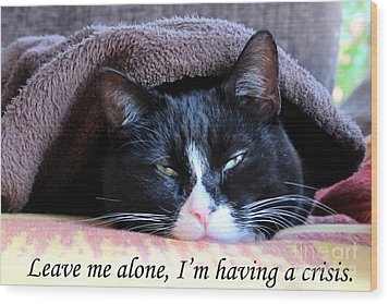 cat Leave me alone Wood Print by Art Photography