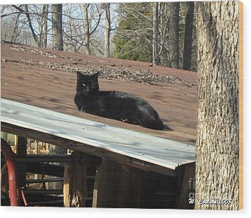 Cat On A Tin Roof Wood Print by Wendy Coulson