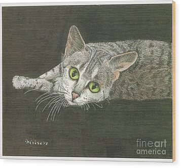 Cat On Black Wood Print