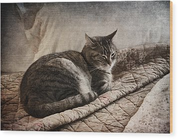 Cat On The Bed Wood Print by Carol Leigh