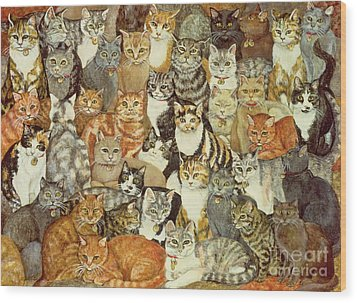 Cat Spread Wood Print