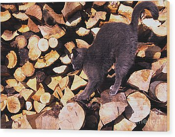 Cat Stretching On Firewood Wood Print by Thomas R Fletcher