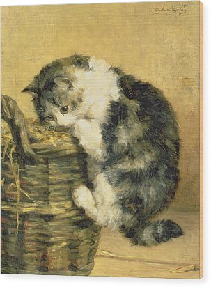 Cat With A Basket Wood Print by Charles Van Den Eycken