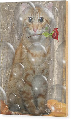 Cat With Bubbles Wood Print by Jo Collins