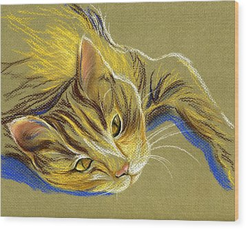 Cat With Gold Eyes Wood Print by MM Anderson