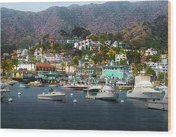Catalina Express  View Wood Print by Joseph Hollingsworth