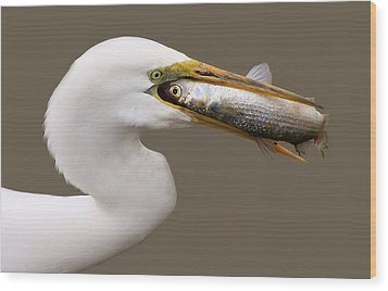 Catch Of The Day Wood Print by Paulette Thomas
