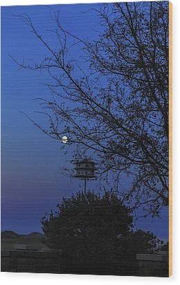 Catching Moonlight Wood Print by Nancy Marie Ricketts