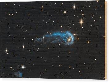 Caterpillar Dust Wood Print by Jennifer Rondinelli Reilly - Fine Art Photography