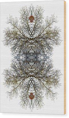Cathedral Glass Wood Print by Debra and Dave Vanderlaan