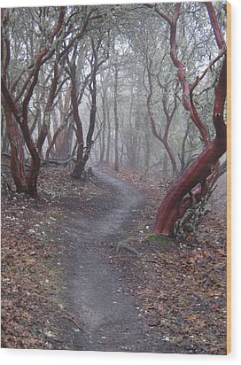 Cathedral Hills Serenity Wood Print by Marie Neder