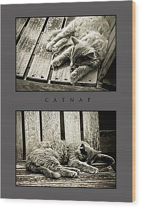 Catnap Wood Print by Greg Jackson